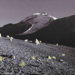 Volcan Pumerape in Abendstimmung, Christoph Thür